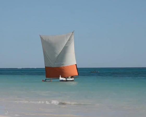 Voyage en pirogue à voile Vezo, du haut plateau vers l'ouest et de Morondava à Toliara